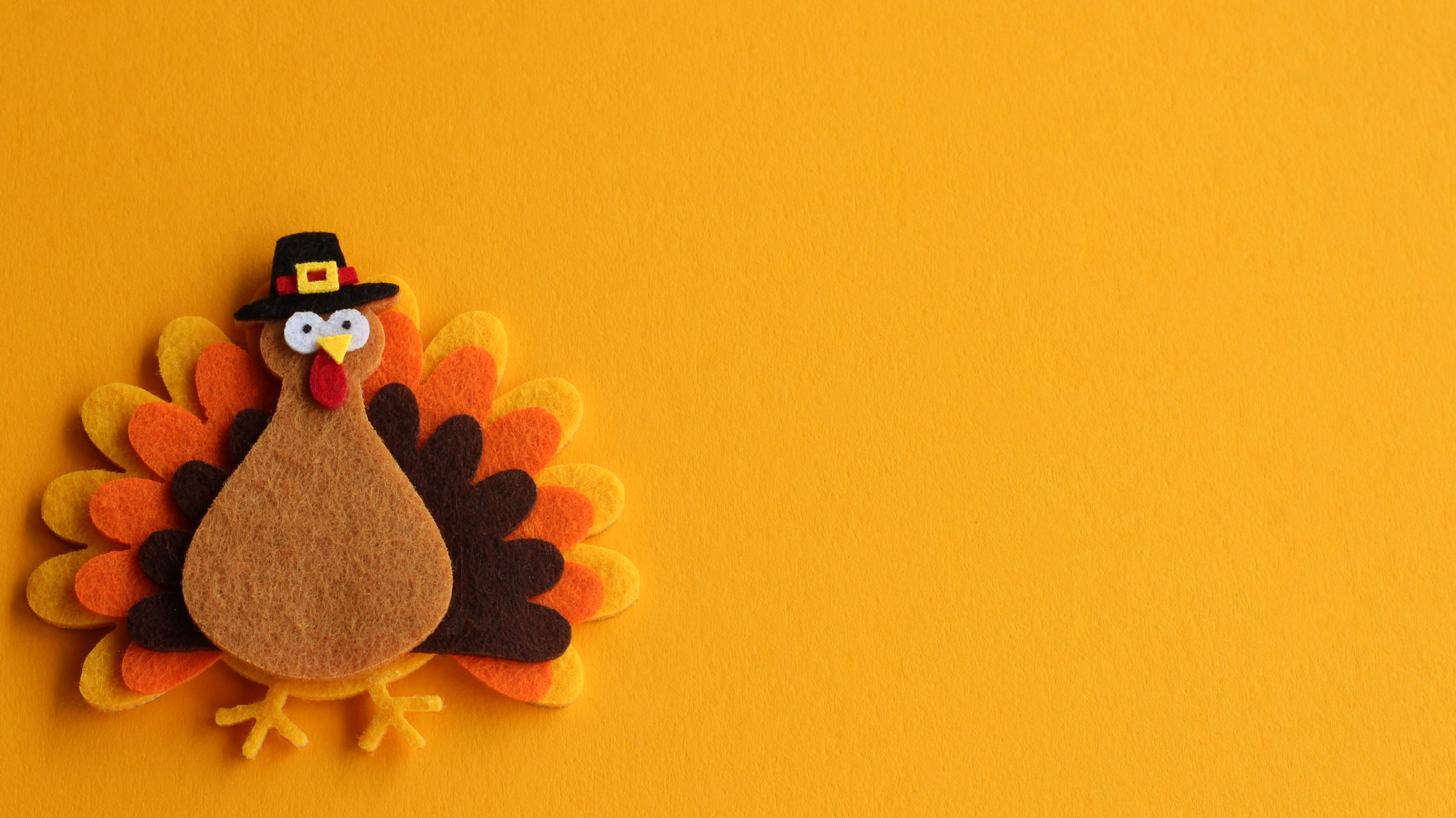 Thanksgiving Day turkey made of felt